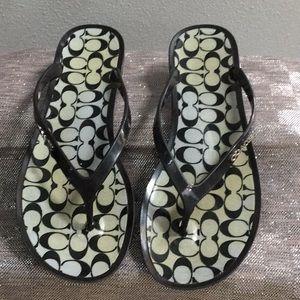Coach woman's size 8 sandal